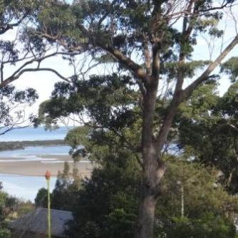 tuross head holiday rental tuross lake view