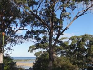 tuross lake holiday rental view