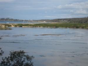 tuross lake to potato point